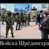 vojska shryodingera