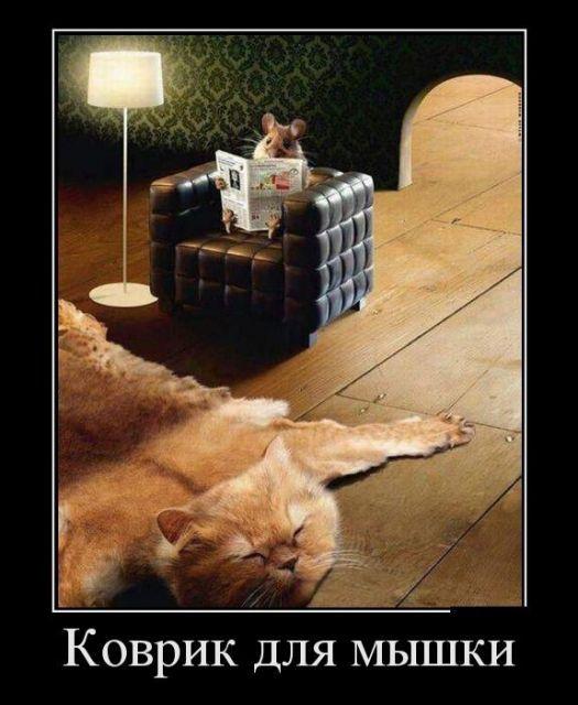 коврик для сышки