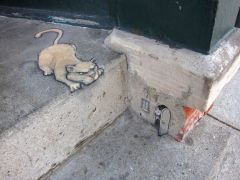 про котякиных